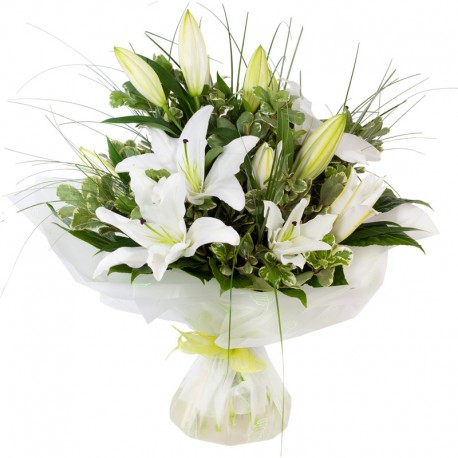 Lilies and foliage